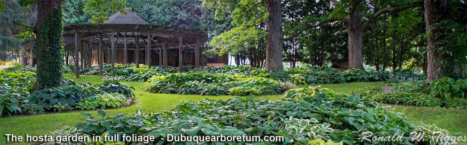 Photo galleries fans and friends of the dubuque arboretum - Dubuque arboretum and botanical gardens ...
